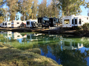 WHAT ARE THE DIFFERENT TYPES OF RVS